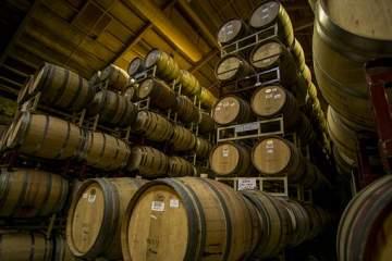 Achat de vin appellation Vins de Bordeaux à Budos